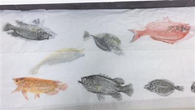 """""""我的梦想是将全国所有不同品种的鱼类都拓印下来,做成一卷鱼拓长卷."""